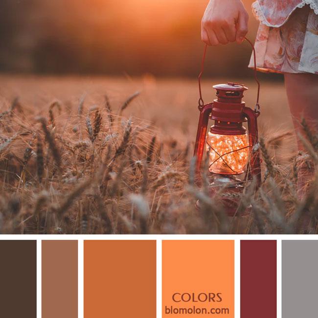 variedad_en_color_paletas_de_colores_53