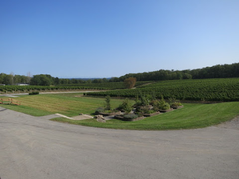 Vineland Estates Bo-Teek Vineyard