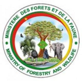 Admissibilités ENEF Mbamalyo 2020-2021