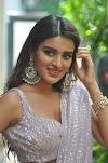 Heroine Nidhhi Agerwal Saree Photos