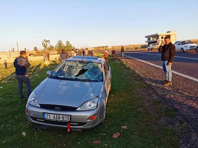 Bozova'da inek kazada telef oldu