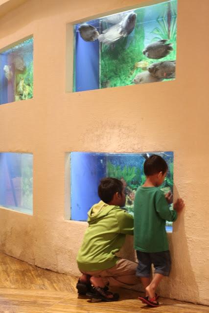 salah satu sudut dengan akuarium di grand candi hotel