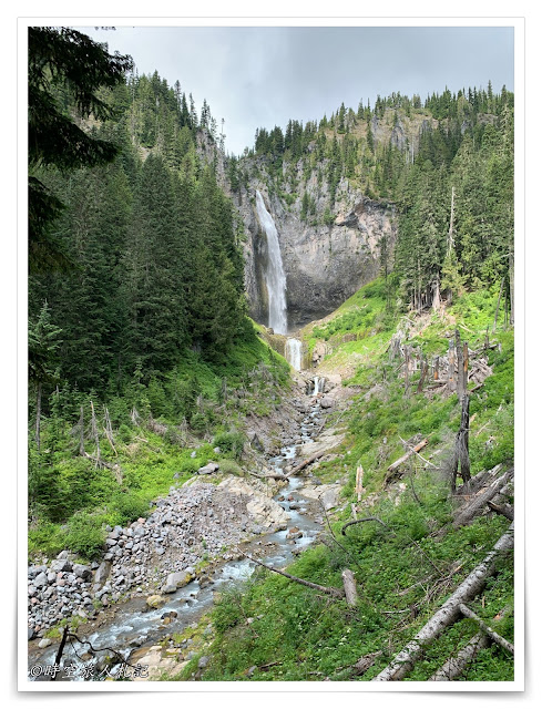 Mt Rainier Ohanapecosh 9