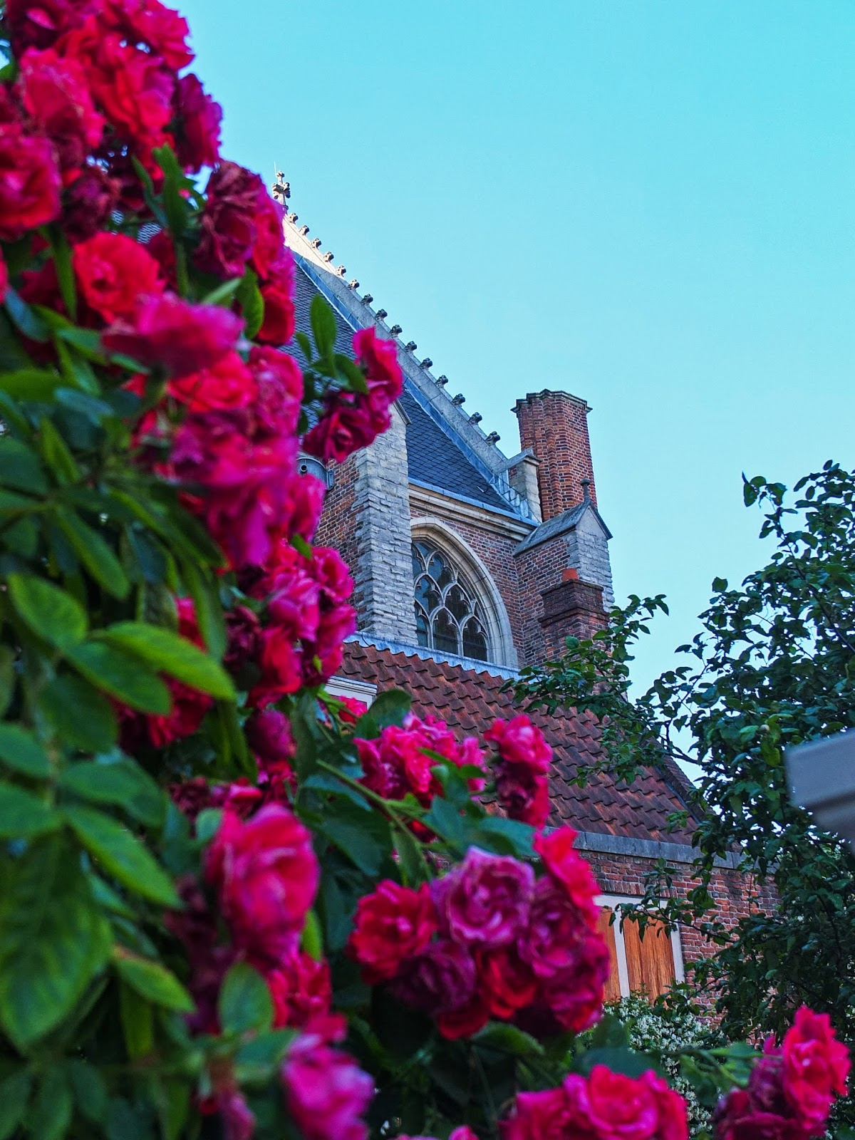Section of the Oude Kerk Church with pink flowers in the foreground.
