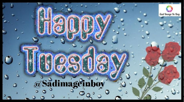 Happy Tuesday images   happy tuesday pics, tuesday lover, good tuesday morning quotes its tuesday images