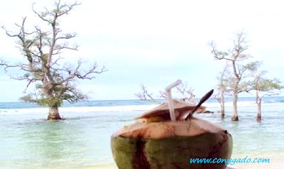 Gambar destinasi Pesona Pantai Lhok Mee Destinasi Aceh