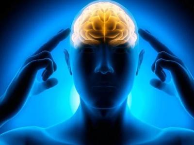 5 Aktivitas ini Ternyata Dapat Meningkatkan Konsentrasi dan Daya Ingat