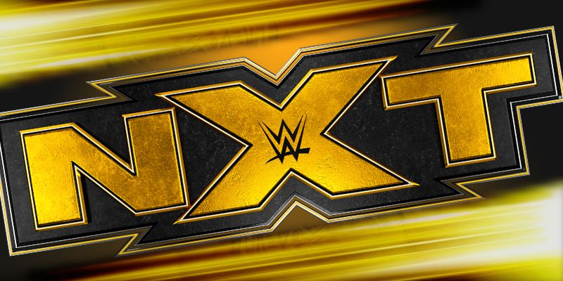 "Ladder Match Qualifier For NXT Week, ""Takeover: XXX"" Logo And Full Announcement"