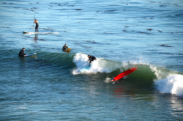 Surf, Santa Cruz, Californie, USA