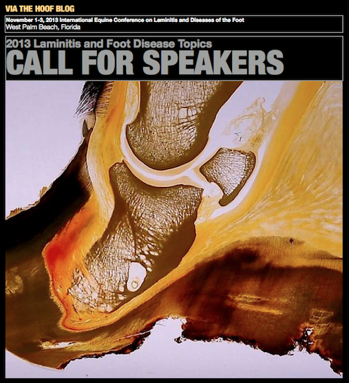 Laminitis Conference 2013 Abstracts