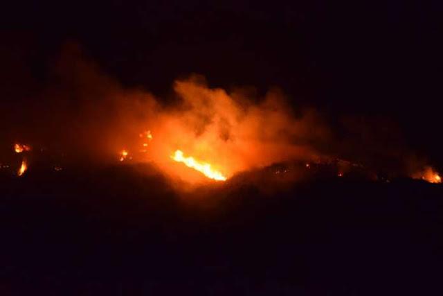 Πύρινος εφιάλτης στην Ηλεία - Δυνάμεις της πυροσβεστικής και από το Ναύπλιο στην κατάσβεση