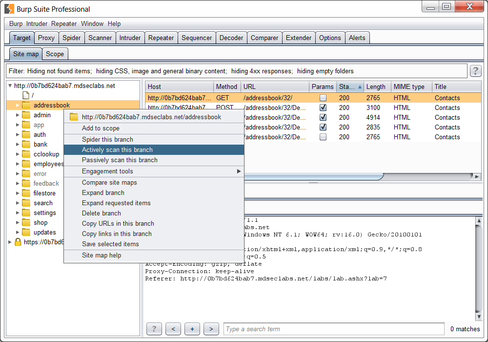 Burp Suite Professional 1 7 14 - The Leading Toolkit for Web