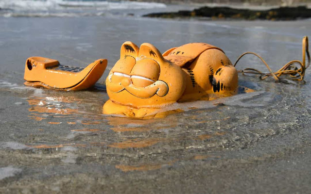 Coisas estranhas que apareceram nas praias