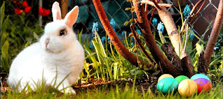 Velikonoce - zajíček, kraslice, jaro