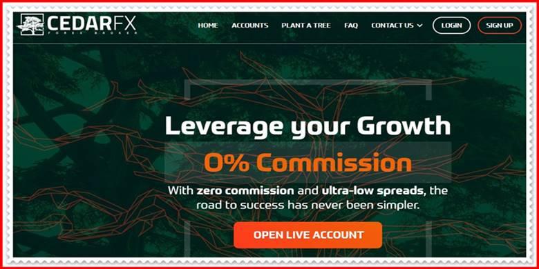 Мошеннический сайт cedarfx.com – Отзывы, развод, платит или лохотрон? Мошенники
