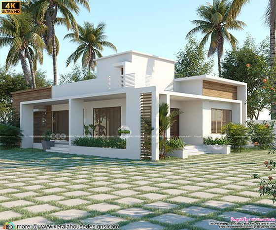 modern contemporary single storied house