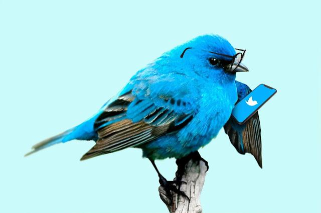¿Y ahora qué Twitter?