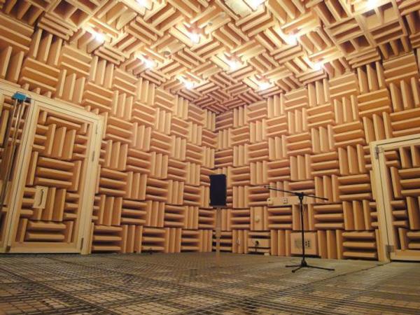 音と光がない空間?無響室に45分間いると人は狂う?【c】