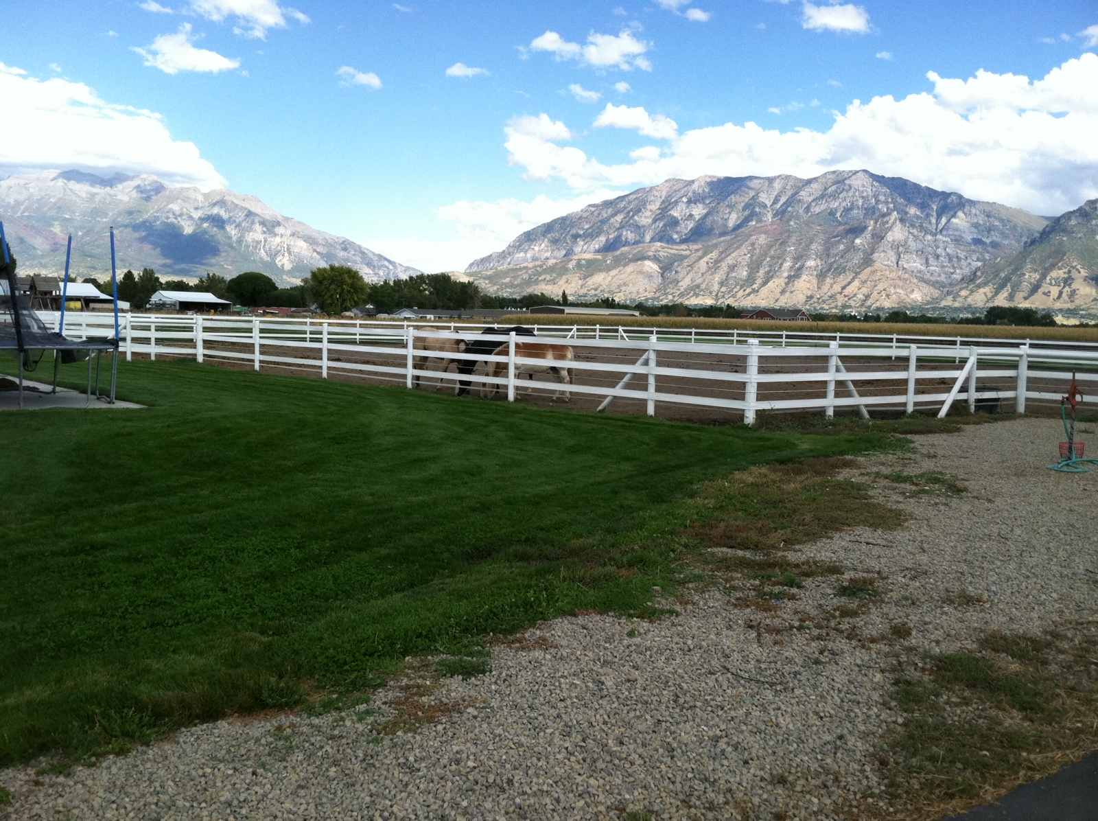 The Shanna Day Team Beautiful 2 Acre Horse Property W