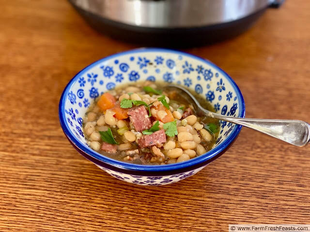 image of a bowl of Instant Pot Hearty Cassoulet and an Instant Pot