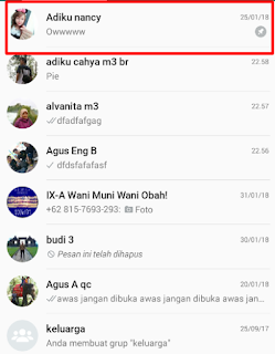 Tidak hanya pada aplikasi BBM saja yang memiliki pin √  Kamu Harus Tau Apa Fungsi Pin Whatsapp dan Cara menggunakannya