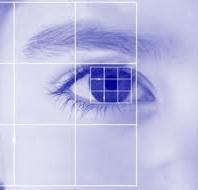 qrbanc98 13 Jenis Sistem Identifikasi Yang Membedakan Antar Manusia