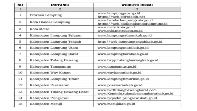 Pengumuman Bersama Seleksi CPNS Provinsi dan Kabupaten/Kota [KLIK Website Ini]