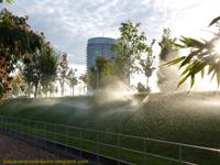 https://www.loqueveoenzaragoza.com/p/parque-del-agua_1.html
