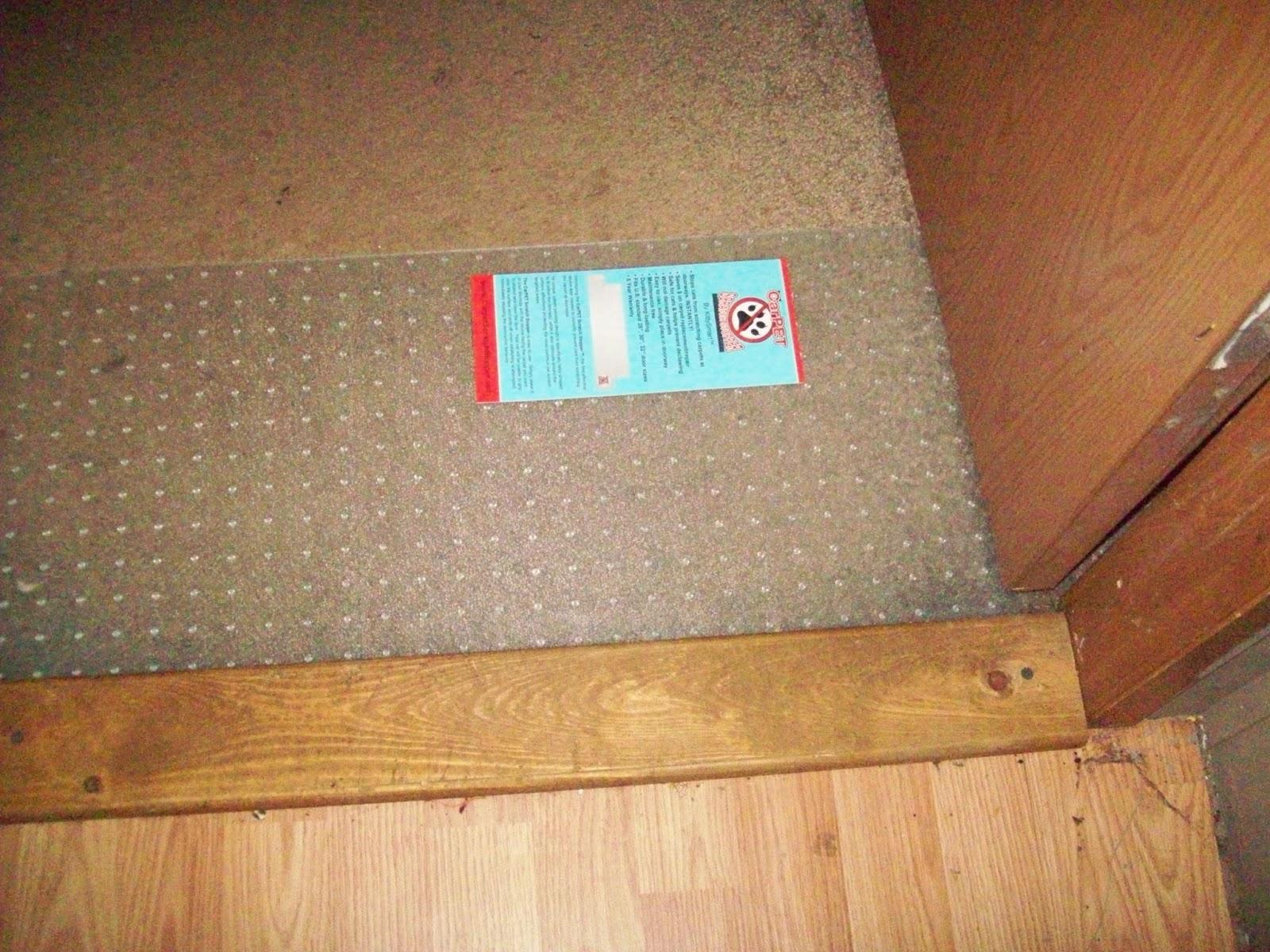 How To Keep Cat From Scratching Carpet Under Door Carpet