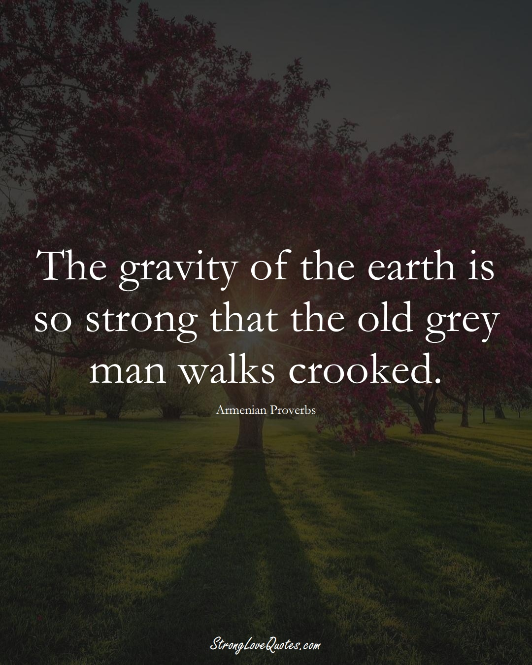 The gravity of the earth is so strong that the old grey man walks crooked. (Armenian Sayings);  #AsianSayings