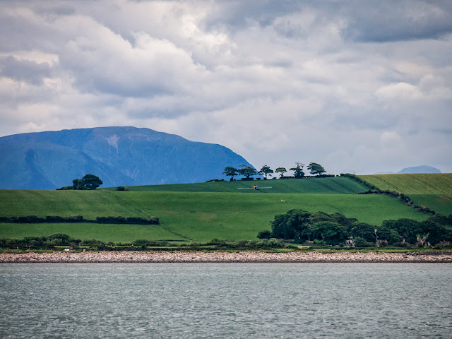 Photo of another view of the shore from the Solway Firth