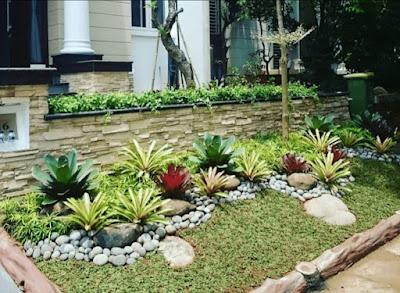 Tukang taman ciapus bogor | tukang rumput bogor