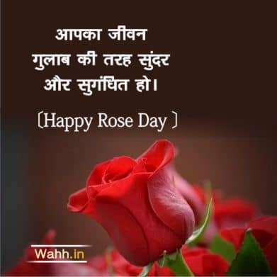 Rose Day Quotes Messages for Husband In Hindi