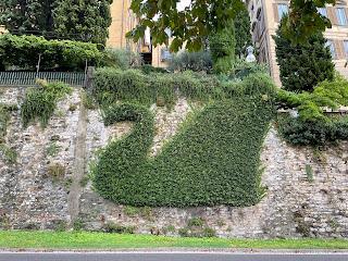 An ivy swan along Viale delle Mura.