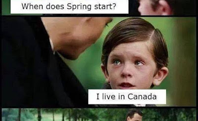Happy Canada Day 2016 Funny Memes Images