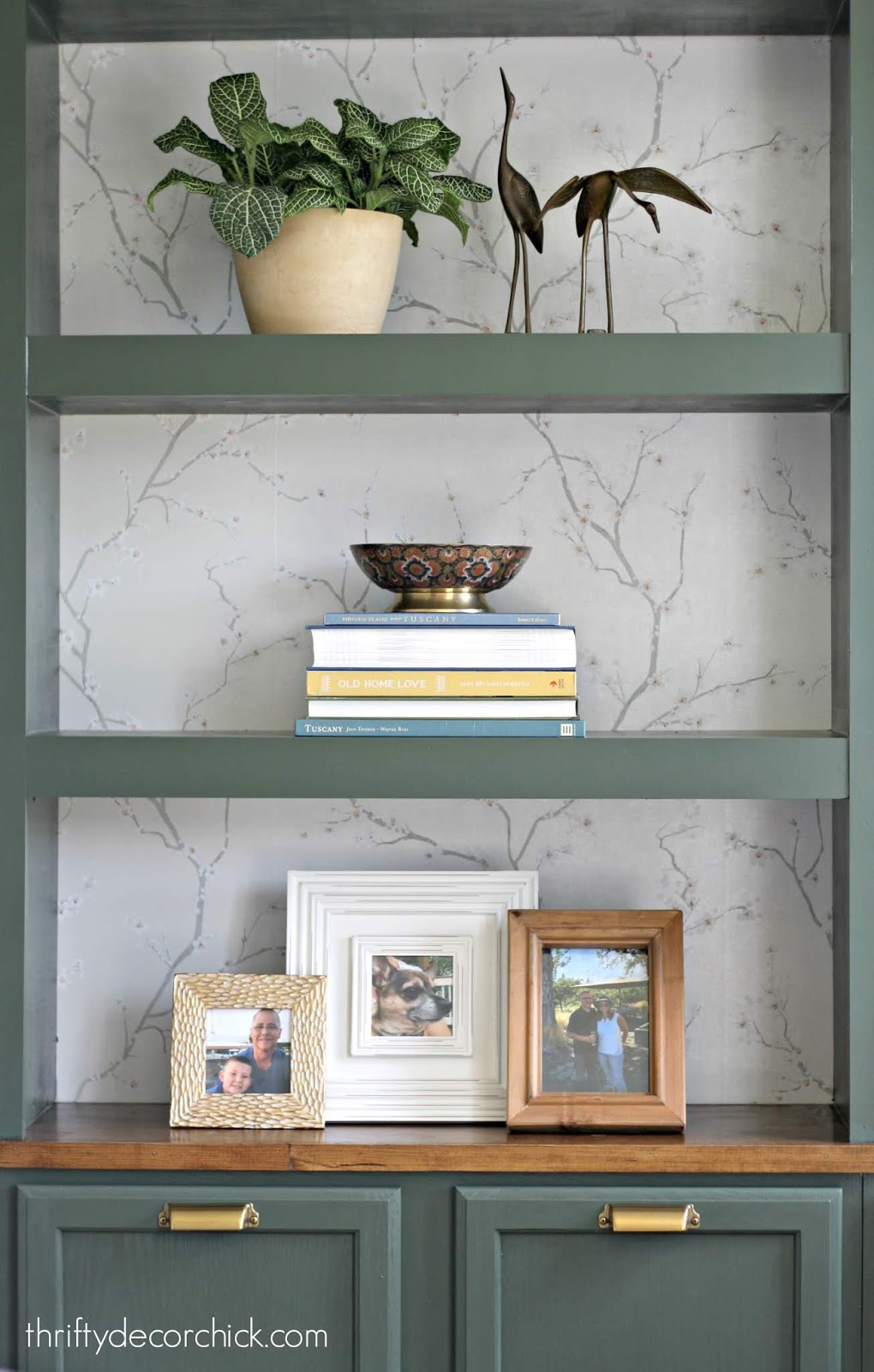 Dark green bookcase with wallpaper back
