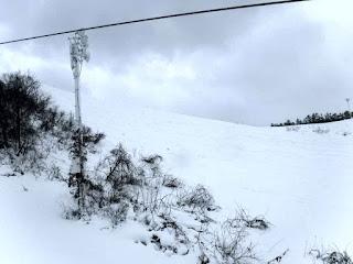 リフト脇の深雪はまあまあ滑りやすかった