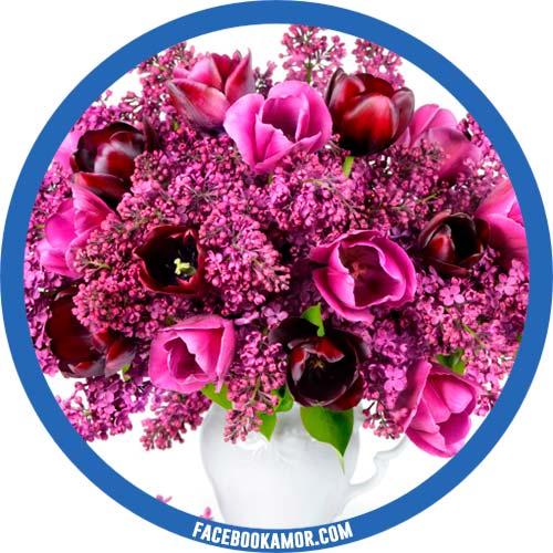 imágenes de flores para perfil de facebook