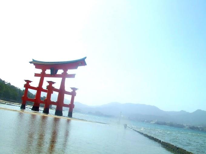 022 #海 #大鳥居 #風景 #神社
