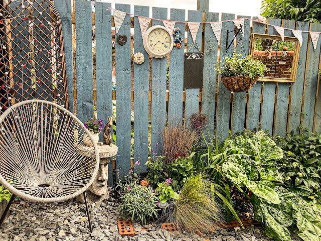 june in mandy charltons small urban garden in newcastle upon tyne, photographer, blogger, urban gardener