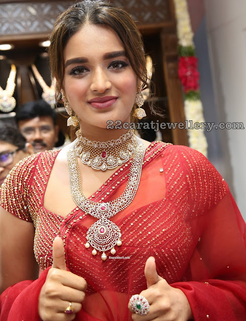 Nidhhi Agerwal Diamond Choker and Jhumkas