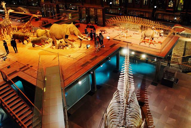 Exposições do Museu Nacional de História Natural em Paris