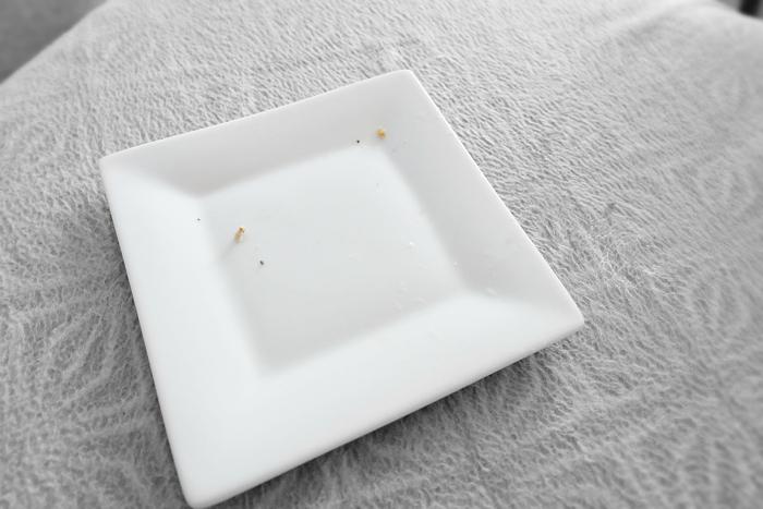 Finn's empty plate