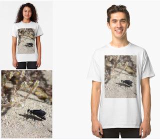 Closeup Black Blister Beetle Coachella Preserve 2 Classic T-Shirt