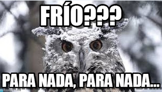 frio.png (617×350)