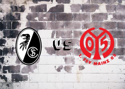 Freiburg vs Mainz 05  Resumen
