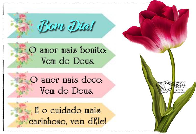 Bom Dia Carinhoso: Bom Dia! O Amor Mais Bonito