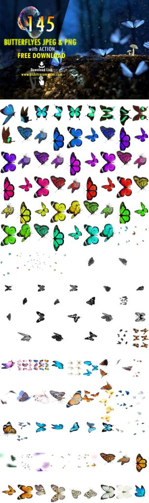 ,butterflies png,flying butterfly clipart,vector art butterfly,vector painted three pink butterfly,realistic butterfly