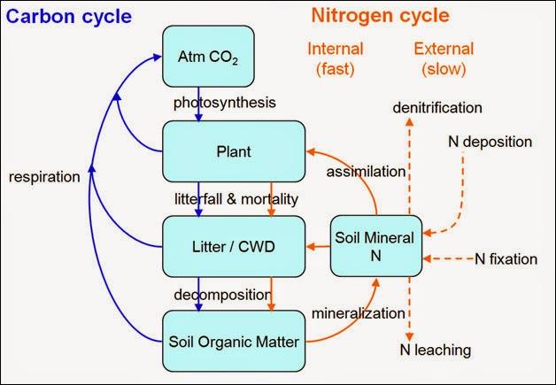 Carbon land soil organic matter decomposition rates for 0 4 soil carbon