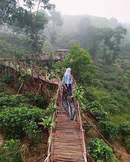 Bukit Panenjoan